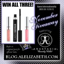 November 2012 Giveaway - Anastasia Beverly Hills